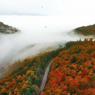 Autumn over clouds